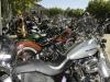 22_Brescoudos_Bike_Week_Herepian_26