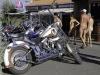 22_Brescoudos_Bike_Week_Village_Naturiste_133