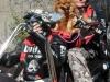24_Brescoudos_Bike_Week_Adissan_26