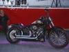 25_Brescoudos_Bike_Week_Bike_Show_40