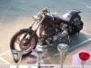27th BBW Show Bike (27)