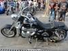 28th BBW Bike Show (132)