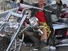 29th BBW Bike Show (2)