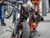 29th BBW Bike Show (234)
