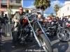 29th BBW Bike Show (273)