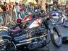 29th BBW Bike Show (388)