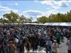 29th BBW Bike Show (247)