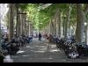 31th BBW Narbonne (147)