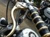 24_Brescoudos_Bike_Week_Accessoires_d_enfer_12