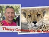 Thierry Gestionnaire site web